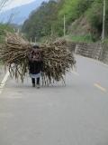 Der Straßenverkehr ist sehr vielfältig
