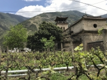 In vino veritas gilt auch in Tibet